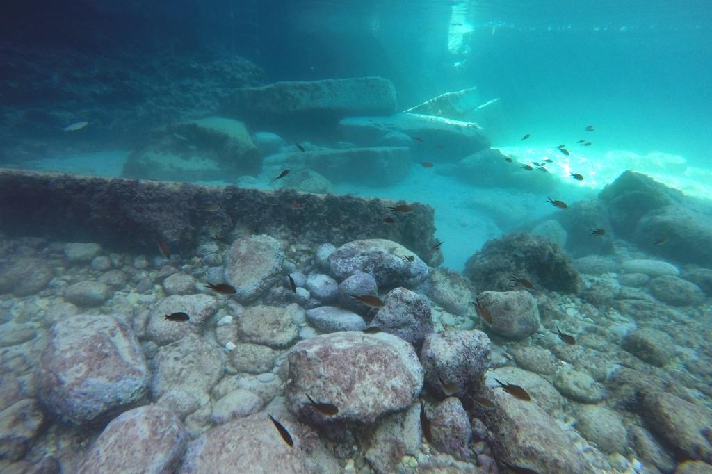 Kaloja ja kivilohkareita