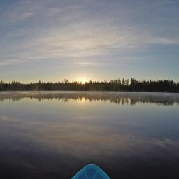 Video: Suppailua auringonnousun aikaan