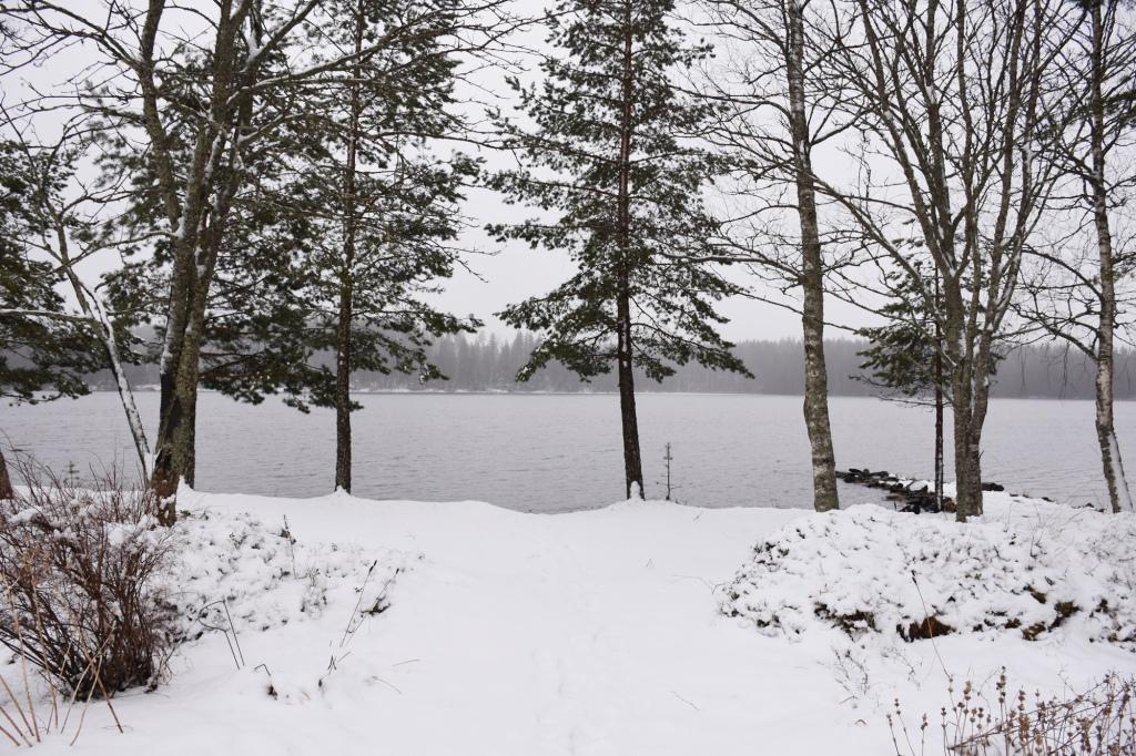 Talvinen vappumaisema