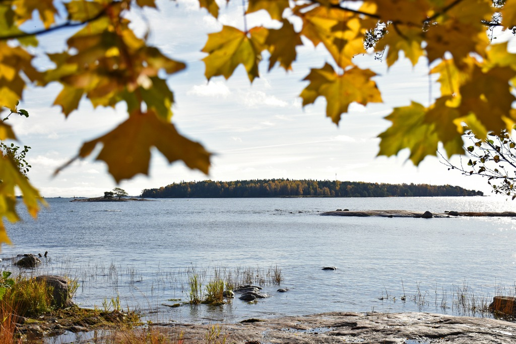 Ruskan väreja Lauttasaaressa