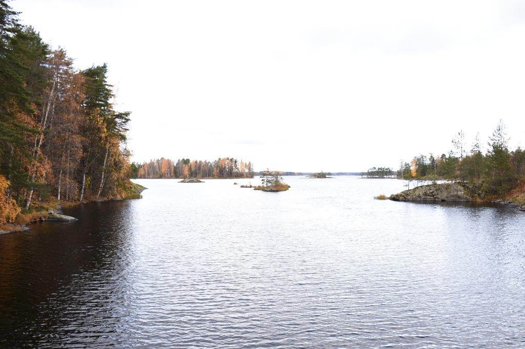 Savonlinna Verkkosaari