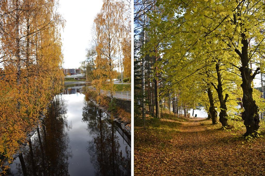 Syksyn lehdet Savonlinna