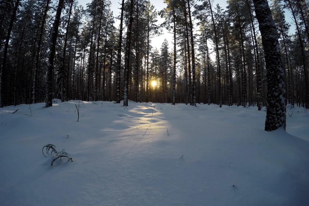 Luminen Lahti