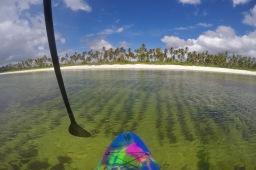 Suppailua ja meritähtien bongailua Sansibarissa