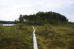 Viikonloppupatikointi Teijon kansallispuistossa