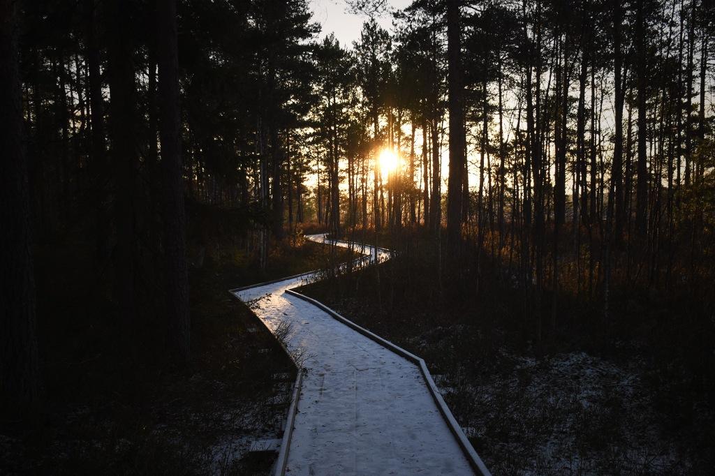 Pitkostettu reitti auringonnousun aikaan
