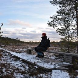 Torronsuon kansallispuiston taikaa