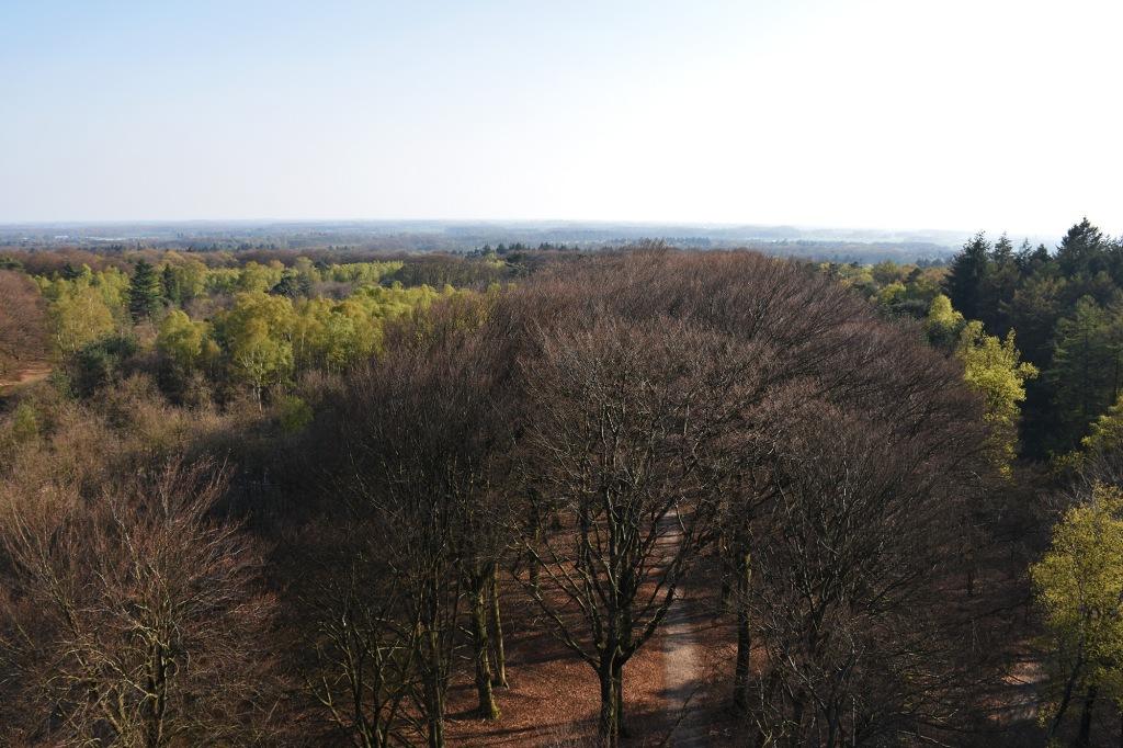 Näkymä De Kaap -tornin huipulta