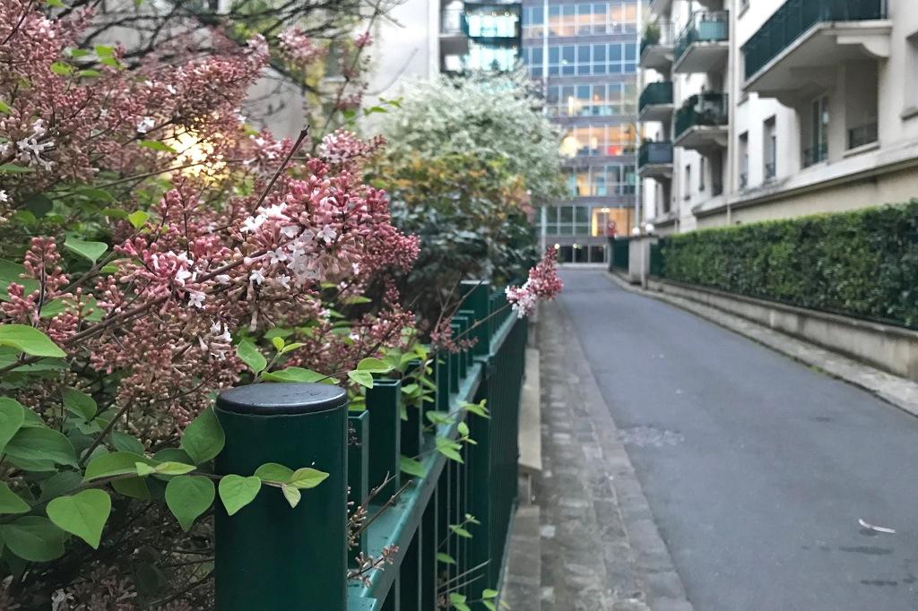 Kevättä Pariisin kaduilla