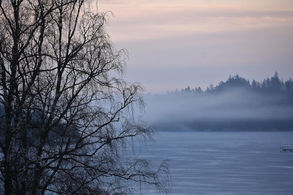 Aamusumu / Tiuruniemi, Saimaa