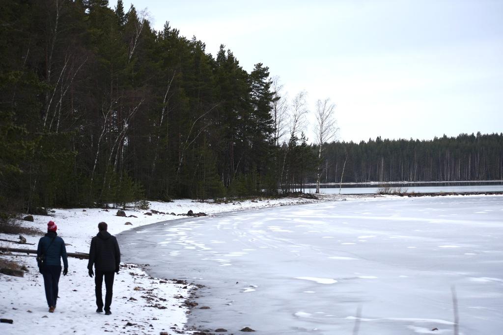 Talvinen Tiuruniemi ja kävelijät