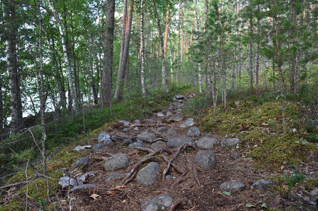 Kiviä ja juuria Harjupolulla