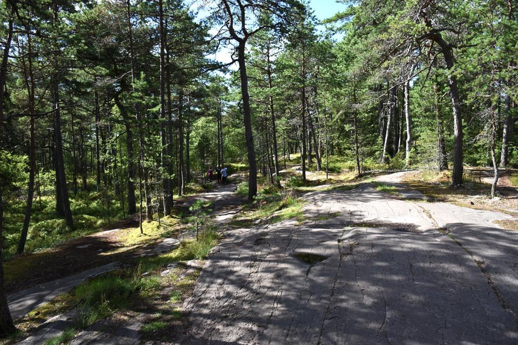 Metsäpolku kohti Pampskatanin pistoa