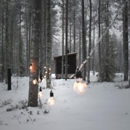 Perhematka napapiirille: Lapin taikaa ja lumisia maisemia