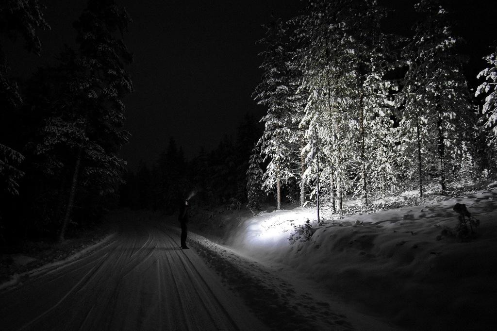 Valo pimeässä metsässä
