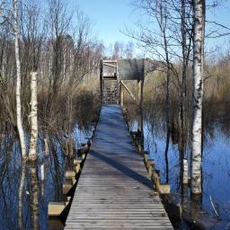 Nupurin lintutorni ja luontopolku Espoossa